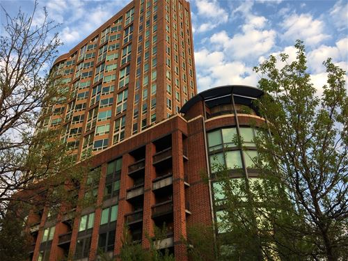 600 N Kingsbury Unit 304, Chicago, IL 60654 River North