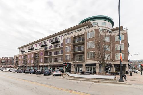 100 S Emerson Unit 312, Mount Prospect, IL 60056