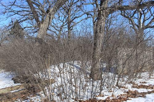15W244 Forest, Elmhurst, IL 60126