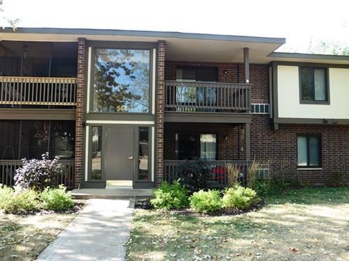 568 Somerset Unit 8, Crystal Lake, IL 60014