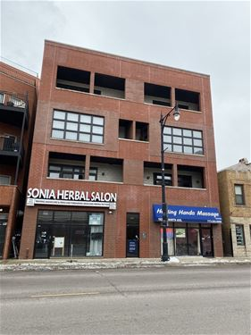 1625 W North Unit 202, Chicago, IL 60622 Wicker Park