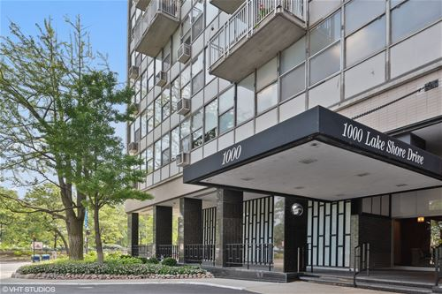1000 N Lake Shore Unit 1505, Chicago, IL 60611 Gold Coast