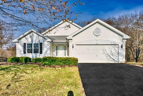 824 Woodhill, Lake Villa, IL 60046