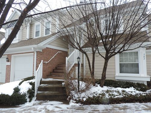 545 Park View Unit 545, Buffalo Grove, IL 60089