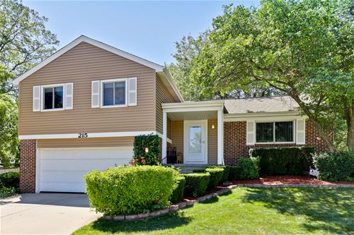215 Augusta, Vernon Hills, IL 60061