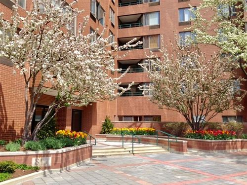 801 S Plymouth Unit 717, Chicago, IL 60605 South Loop