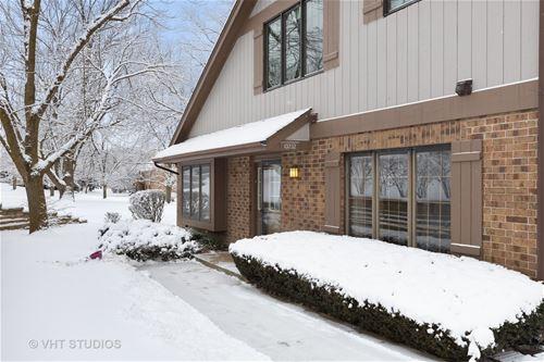 13232 S Oak Hills, Palos Heights, IL 60463