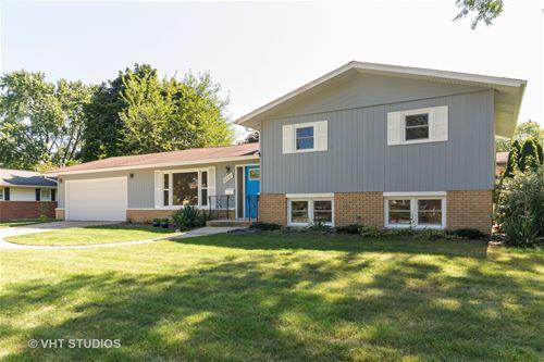 6541 Lyman, Downers Grove, IL 60516
