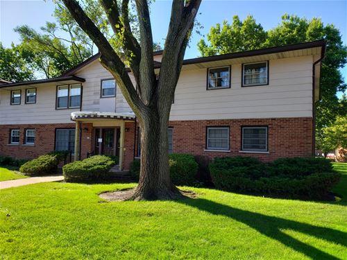 212 Washington Unit A, Elk Grove Village, IL 60007