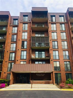 111 Acacia Unit 201, Indian Head Park, IL 60525