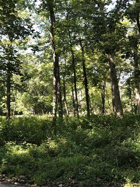 306 E Witchwood, Lake Bluff, IL 60044