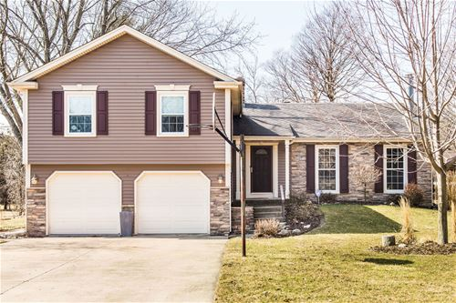822 Spring, Roselle, IL 60172