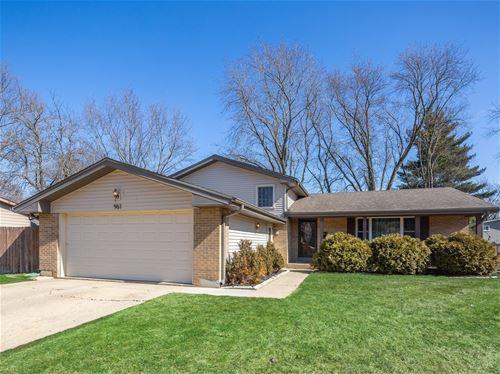 961 Darlington, Crystal Lake, IL 60014