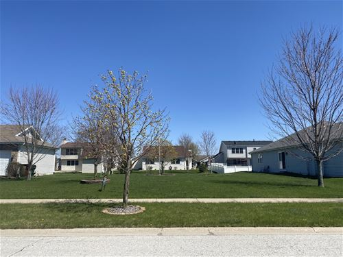 1439 Trailside, Beecher, IL 60401