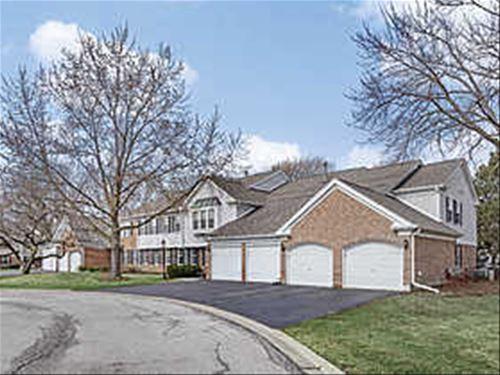 708 Burr Oak Unit B, Prospect Heights, IL 60070