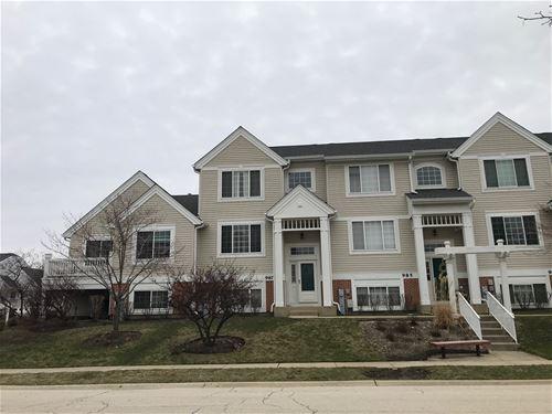987 Mayfair Unit 2-10, Elk Grove Village, IL 60007