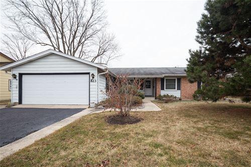 623 Ipswich, Elk Grove Village, IL 60007