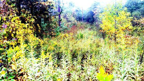 0 County Line, Highland Park, IL 60035