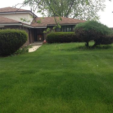 609 Old Meadow, Matteson, IL 60443