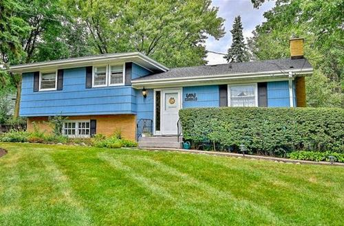 1028 59th, Downers Grove, IL 60516