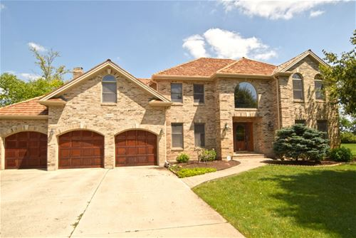 10803 Royal Porthcawl, Naperville, IL 60564
