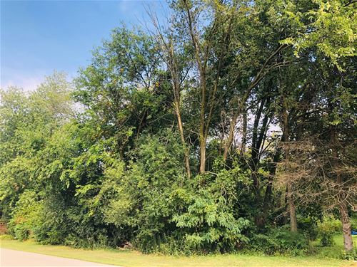 Lot 16 Ray, West Chicago, IL 60185