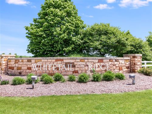 Lot 28 Whitetail, Yorkville, IL 60560