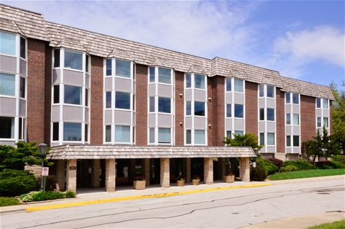 300 Thames Unit 2-D, Park Ridge, IL 60068