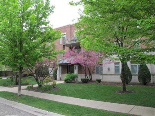 1021 W Peterson Unit 206, Park Ridge, IL 60068 Norwood Park