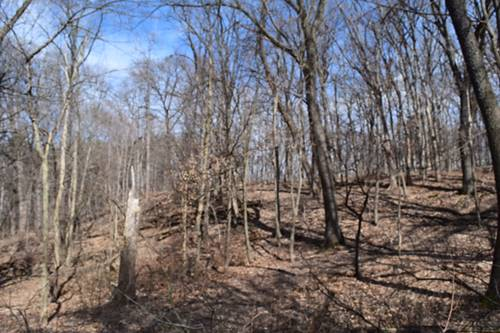Lot 7 & 8 Riverview, Algonquin, IL 60102