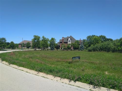 16217 Gamay, Plainfield, IL 60544