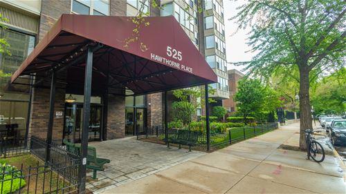 525 W Hawthorne Unit 407, Chicago, IL 60657 Lakeview