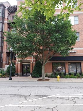 930 Curtiss Unit 108, Downers Grove, IL 60515