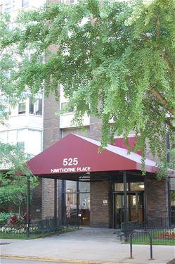 525 W Hawthorne Unit 601, Chicago, IL 60657 Lakeview