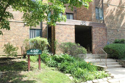 420 Walnut Creek Unit 3105, Lisle, IL 60532