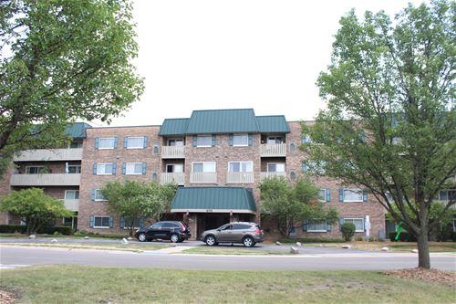 675 Grove Unit 314, Elk Grove Village, IL 60007