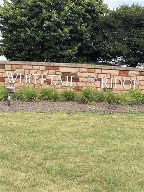 Lot 159 Whitetail Ridge, Yorkville, IL 60560