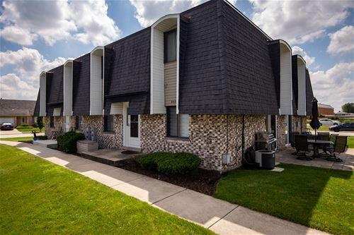 8420 162nd Unit 4, Tinley Park, IL 60487