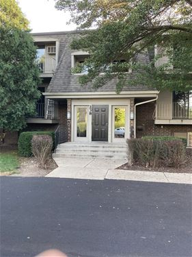 238 E Bailey Unit E, Naperville, IL 60565