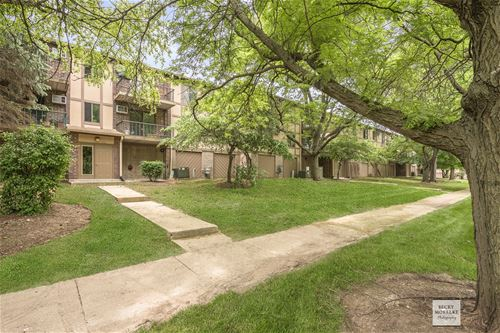 528 E Bailey Unit 204, Naperville, IL 60565