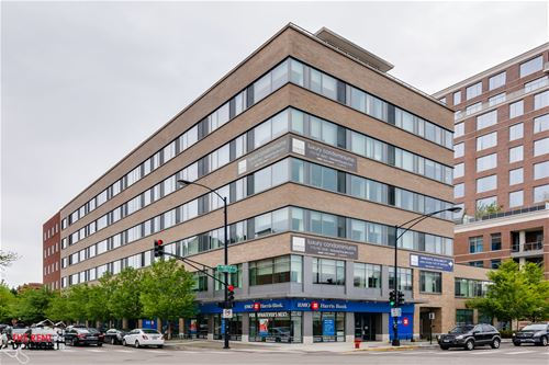 558 W Webster Unit 508, Chicago, IL 60614 Lincoln Park