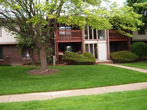 801 Garden Unit 5, Streamwood, IL 60107