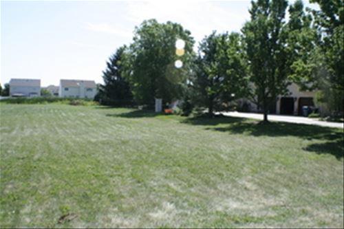 17563 S Richmond, Plainfield, IL 60586