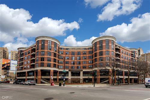 350 W Belden Unit 508, Chicago, IL 60614 Lincoln Park