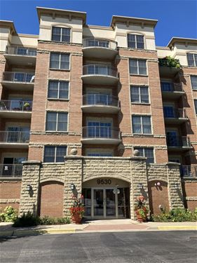 9530 Cook Unit 211, Oak Lawn, IL 60453