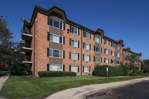 1227 S Old Wilke Unit 203, Arlington Heights, IL 60005