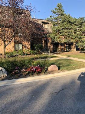 11 Oak Creek Unit 1119, Buffalo Grove, IL 60089