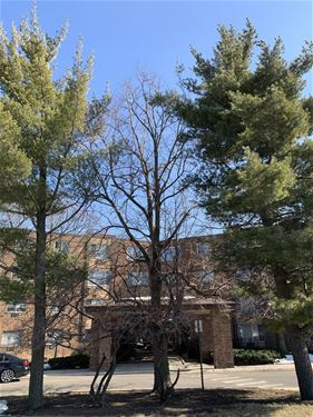 1475 Rebecca Unit 217, Hoffman Estates, IL 60194