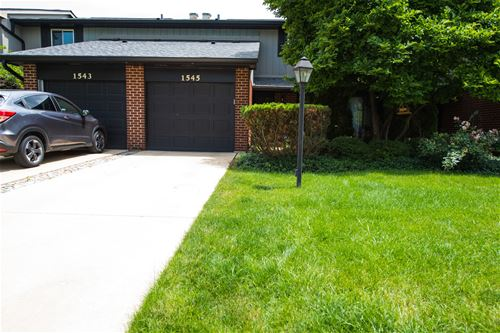 1545 Blackburn Unit 1545, Wheaton, IL 60187