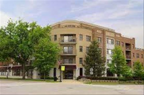 586 Crescent Unit 304, Glen Ellyn, IL 60137